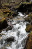 Argentine, Chili - Ushuaia - Petit torrent